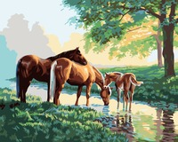 Three Pony Horses Drink Water Beautiful Scenery Pictures By Numbers Painting For Artwork Painting Unframed 40x50CM