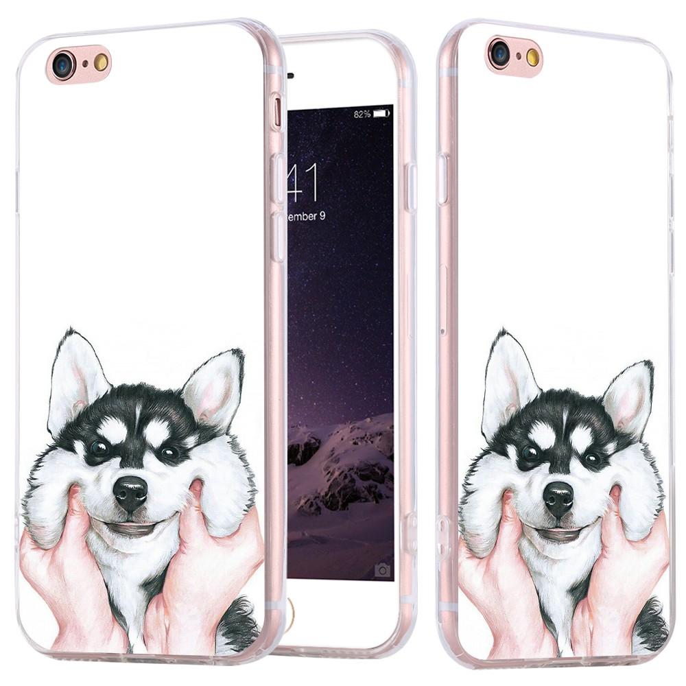 dog case  (4)