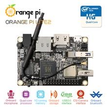 Örnek testi turuncu Pi Lite2 tek kart, indirimli fiyat sadece 1 adet her sipariş