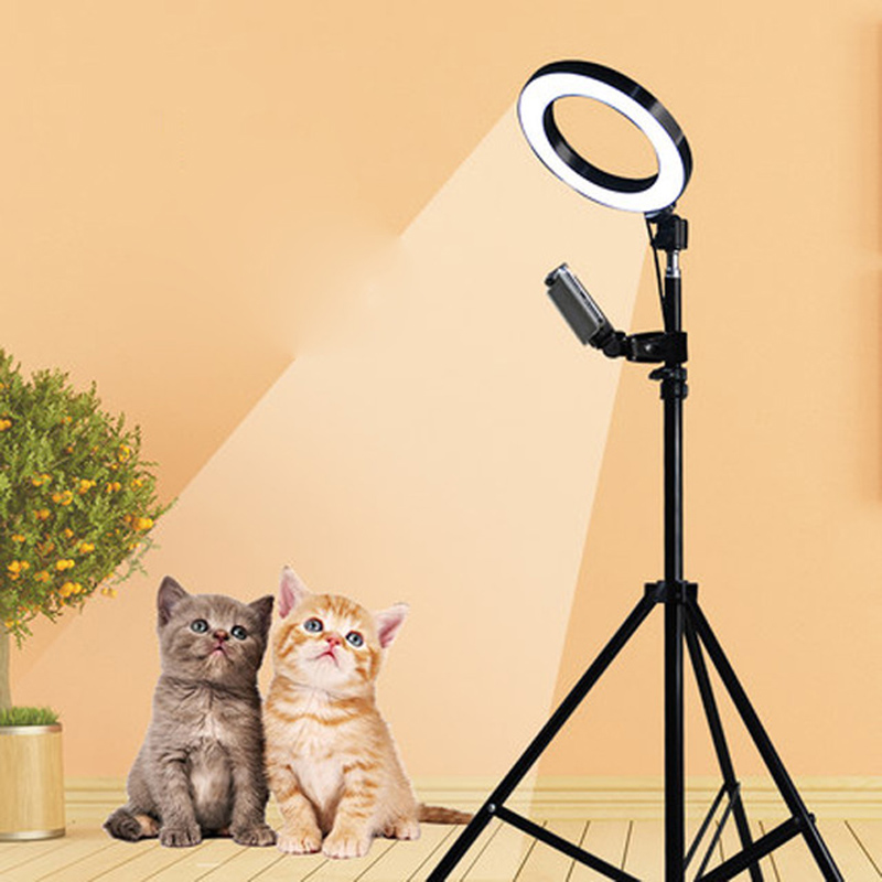 Dimmable LED Studio Camera Ring Light Photo Phone Video Light Annular Lamp With Tripods Selfie Stick Ring Fill Light For Canon