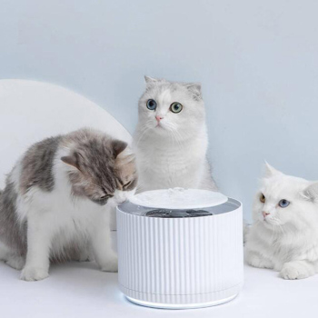 Xiaomi Kitten Water Dispenser 1.88L