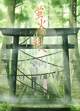 《萤火之森》2011年日本剧情,爱情,动画动漫在线观看