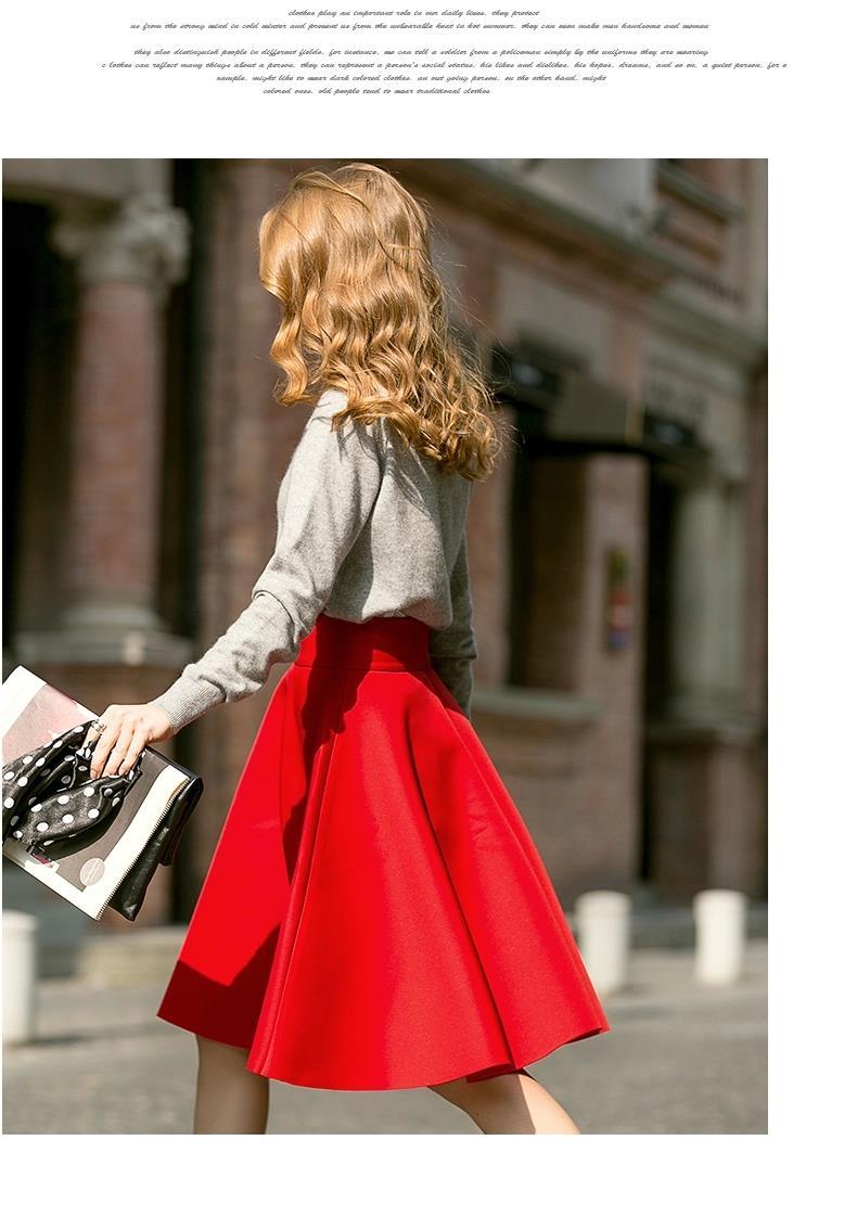 Umbrella Retro Waisted Pleated Skirt 1