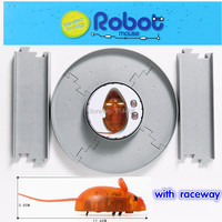 Nanotechnology Electronic Mouse Cartoon Model Toys With Raceway Children S Interest Play Game Mouse Running Make