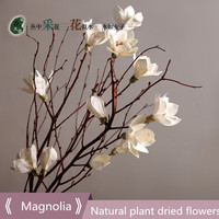 1PCS Magnolia natural stem dried flowers high grade art floral decoration multi branch simulation branch flower gift bouquet