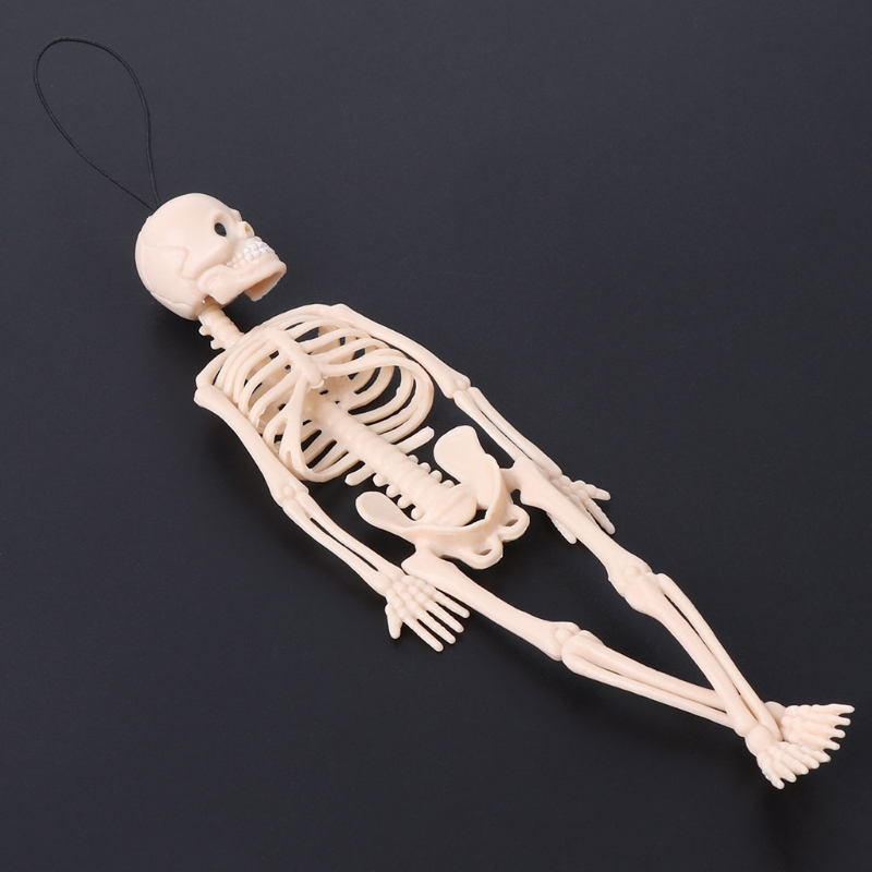 Skeleton Human Model Skull Full Body Mini Figure Toy Phone Hanger Halloween