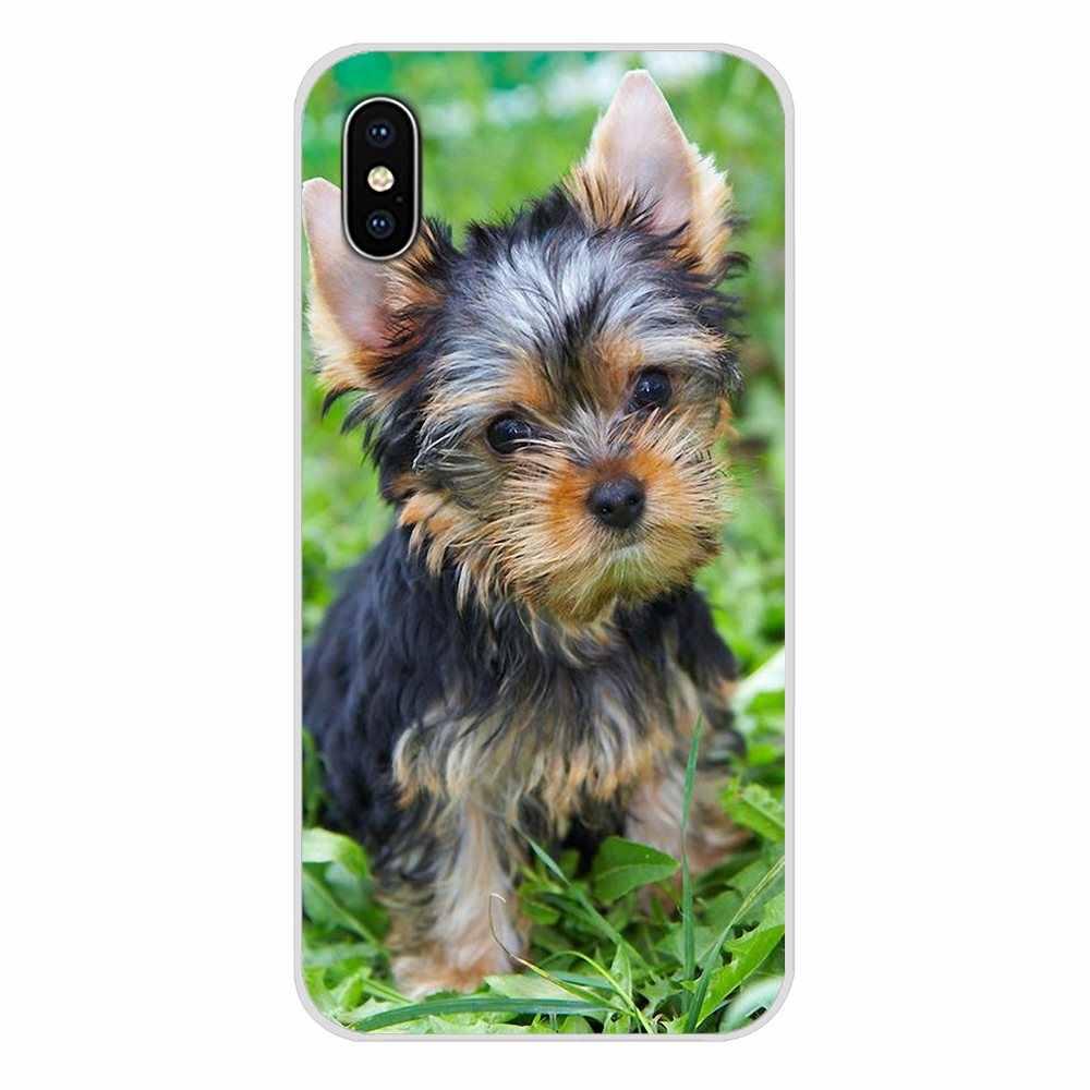 Pour LG G3 G4 Mini G5 G6 G7 Q6 Q7 Q8 Q9 V10 V20 V30 X Power 2 3 K10 K4 K8 2017 Airedale Terrier chien art Silicone Couverture de Peau De Téléphone