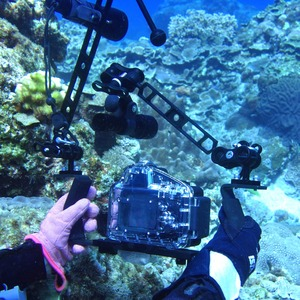 Image 5 - PULUZ Dual Aluminum Alloy Ball Clamp for Underwater Camera Arm System