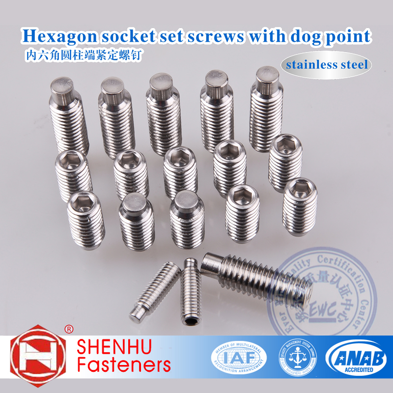 Factory Direct Sales DIN915 Stainless Steel 304 Hexagon Socket set screws with dog point 100pcs/lot