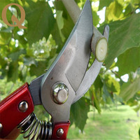Big Sale High Grade Garden Branch Cut Fruit Tree Pruning Shears Gardening Scissors Flowers Gardening Tools