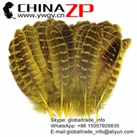 CHINAZP Factory 100pcs/lot Good Quality Colored Yellow Natural Ringneck Hen Pheasant Quill Wing Feathers for Costume Projects