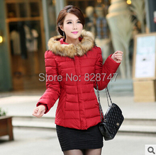 Бесплатная доставка Весна осень 2016 новый зимний женщин Корейской простой сплошной цвет с длинными рукавами с капюшоном меховой воротник пальто Дешево оптовая
