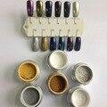 Comercio al por mayor 12 Colores de Uñas Polvo Arte Escarcha Polvo Metálico Color Dama de Salón de Uñas