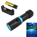 10W 2300Lm CREE XM-L L2 LED Waterproof Diving Flashlight Torch Underwater 100M & +18650 4000mah Battery/Charger