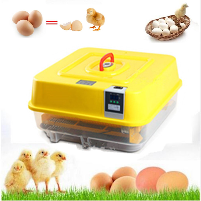 Mini household small eggs incubator with temperature control hatchery poultry hatching machine cheap egg incubator for sale small chicken poultry hatchery machines 48 automatic egg incubator 220v hatching for sale