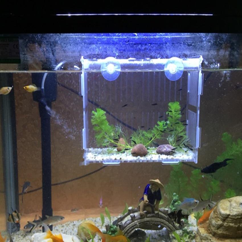 Acrylic Aquarium Isolation Box Acrylic Aquarium Fry