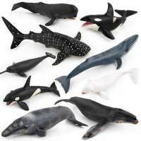 Simulation baleine Animal Figure à collectionner jouets océan Animal Cognition figurines enfants solide en plastique ciment jouets