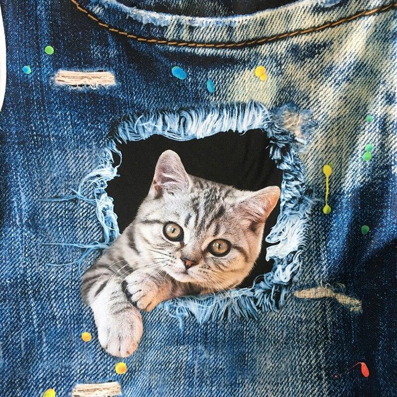 картинки котят в джинсах желаете купить фотовспышку