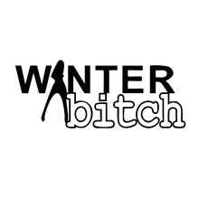 New Product Car Sticker Winter Auto Aufkleber Attractive Funny Vinyl Decal Style Personality Accessories Jdm