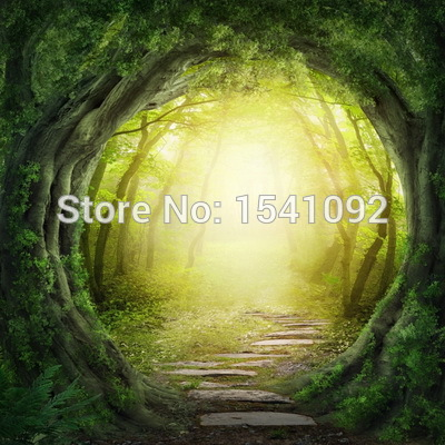 10x10ft Customize free shipping Thin vinyl cloth photography backdrop scenery computer Printing background for photo studio f173