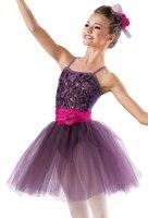 2016 New Lady Ballet Dance Dress Girls Ballet Tutu Costume Women Stage Proformance Competition Suit Dress