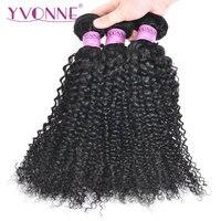 Yvonne Kinky Curly Brazilian Remy Hair Bundles Human Hair Weave Natural Color