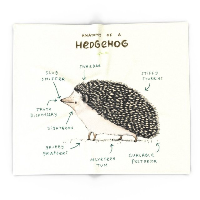 Blanket Custom Anatomy Of A Hedgehog Fleece Blanket Sofabedplane