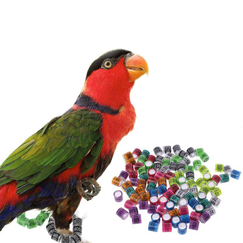 Bird Foot Rings Bird Supplies 20pcs/bag Pigeon Identify Dove Rings Leg Rings Bands Aluminium Ring Training Tool--random Color