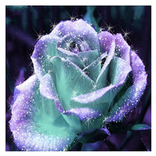 CaiLong1990 Diamond Embroidered Purple Rose Needle 5D DIY Painting Floral Full Round Rhinestone Mosaic Decoration