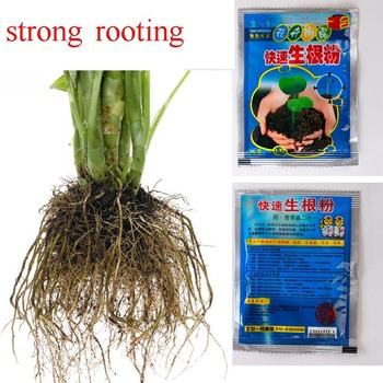 10PCS Flower Plant Strong Rooting Powder Growing Roots Fast growing roots seedling germination aid Gardening Supplies vigor