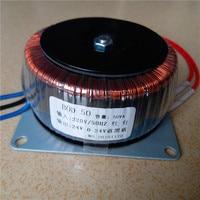 24V 0 24V 1A Ring transformer copper 50VA 220V input Dual 24V custom toroidal transformer for power supply amplifier