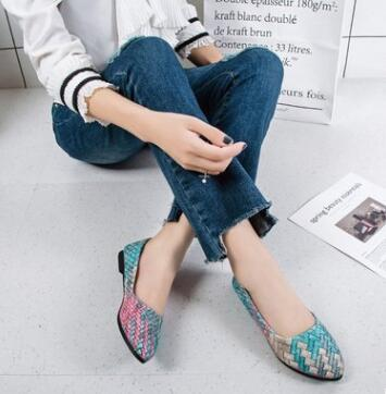 New Wave Wild Shallow Mouth Pointed Multicoloured Coloured Ladies Slip-on shoes