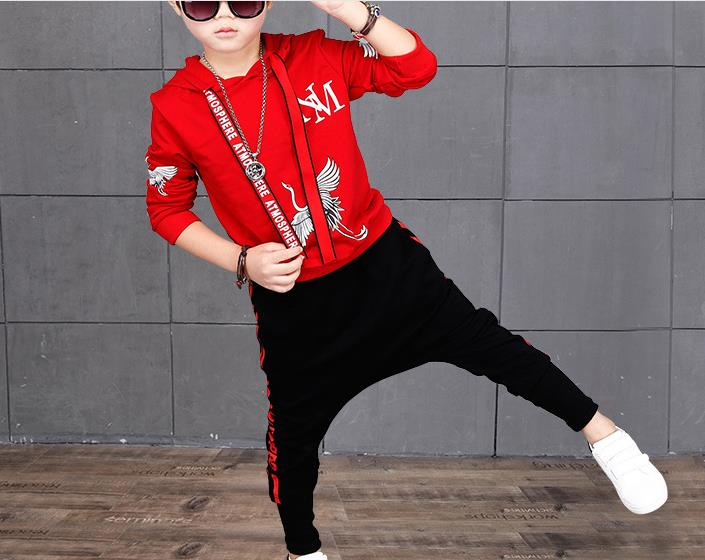 hai02  3color NICBUY Retail New spring autumn children's clothing suits sunflower  hoodies + pants tracksuit boys and girls taiwan hai bao 200cc
