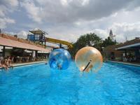 Профессиональный Высокое качество ТПУ или ПВХ Глобус воды гигантские водные шарик хомяка