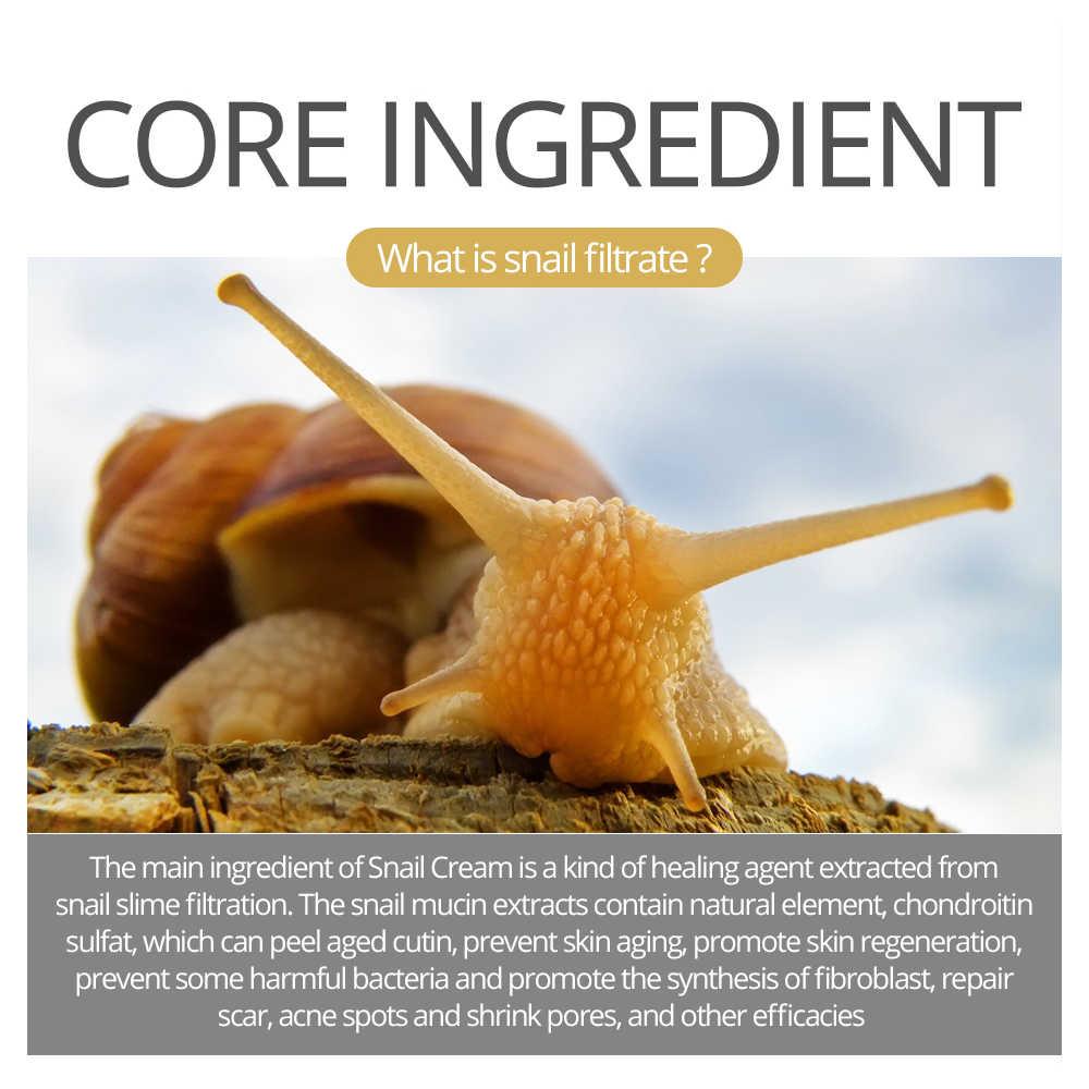نابضة بالحياة البهجة الحلزون كريم وجه تبييض إزالة البقع الصباغ سطع السيطرة على الجلد النفط المضادة للتجاعيد مكافحة الشيخوخة العناية بالبشرة جديد