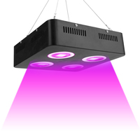 1000W LED Grow Light Full Spectrum COB Chips Grow Lamp for Indoor Greenhouse Medical Plants Growth Flowering Bloom High Yield