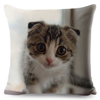 Cat Pillow Cases