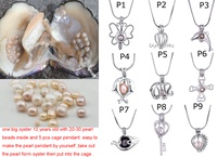 9pcs Pearl Cage Charms Pendant+1pc Big Freshwater Monster Oyster Natural Pearl Oyster DIY Wish Pearl Gift Pearl Party Fun PJW212