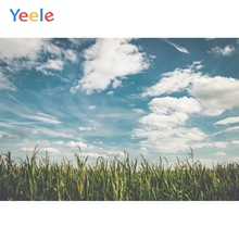 Yeele Landscape Photocall Farm Chinese Sorghum Cloud Photography Backdrop Personalized Photographic Backgrounds For Photo Studio