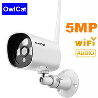 Full HD 2MP/5MP Security Wireless IP Camera Wifi Built in Microphone Audio Pickup Onvif 2.4 Motion Detection 128G Memory SD Slot