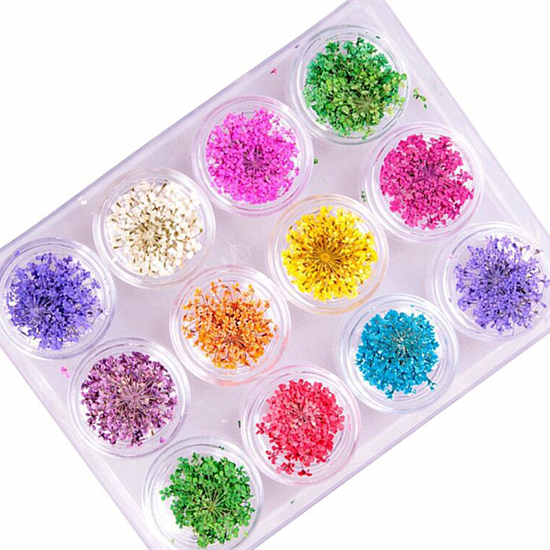 12 Colors DIY Nature Real Nail Dried Flower Nail Art Sticker Decals Small Flower 3D Nails Tips Rhinestones Decorations 3d 12 candy colors glass fragments shape nail art sequins decals diy beauty salon tip free shipping