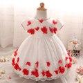 Baby girl dress vestidos de bautizo niño ropa infantil flower girls tutu dress para 1er cumpleaños bautismo trajes vestidos de bebé