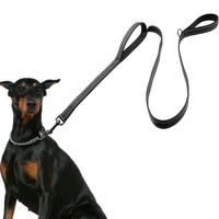 Dog Leash 2 Handles Black Nylon Padded Double Handle Leash For Greater Control Safety Training Protect