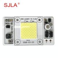 Chip Power Diver Integration Projecteur Exterieur Refletor Lamp Warm Cool Natural White 110V 220V 50W 100W