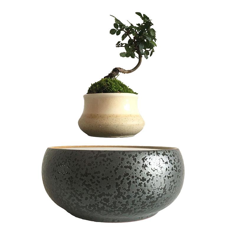 japn de la levitacin magntica flotante plantas bonsai olla pequea olla de cermica regalos de