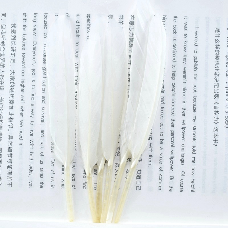 beautiful Natural Duck feathers for crafts jewelry making 10 15cm DIY Dyed feather party Home plumes materials decoration plumas in Feather from Home Garden