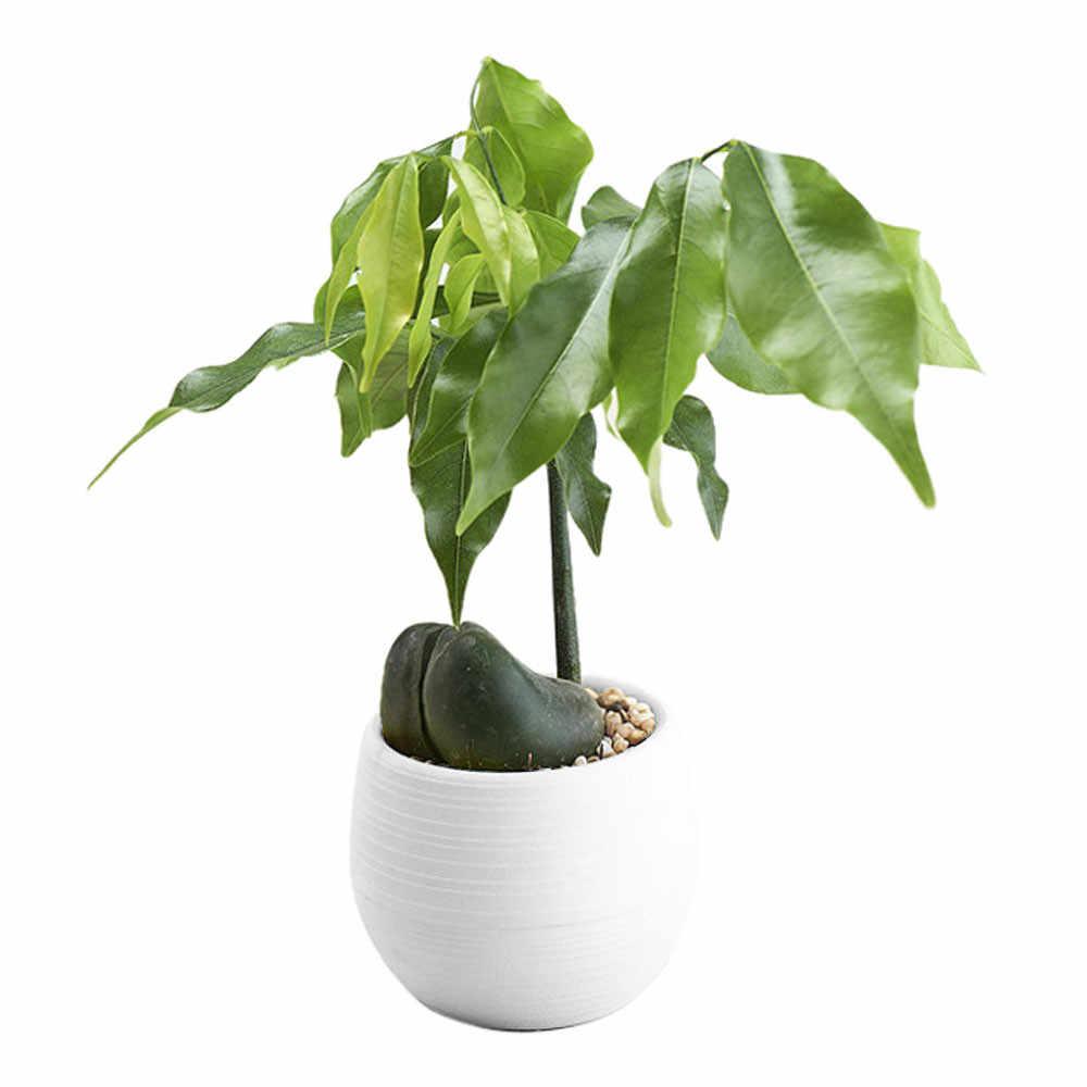 1 ピース植木鉢ミニカラフルなラウンドプラスチック植物フラワーポットホームオフィス寝室の装飾プランター素敵な装飾工芸品
