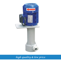 220v50hz Chemcial Vertical Resistant Submerged Pump 1/8 Alcohol Circulating Pump