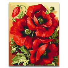 Red pink beautiful poppies oil painting package diy pictures coloring draw by numbers with kits for adult kids paint  frame