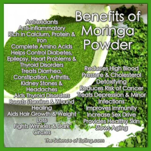 US $90 0 |Free Shipping 1KG health products moringa leaf powder for cure  liver disease 20:1 improve blood system on Aliexpress com | Alibaba Group